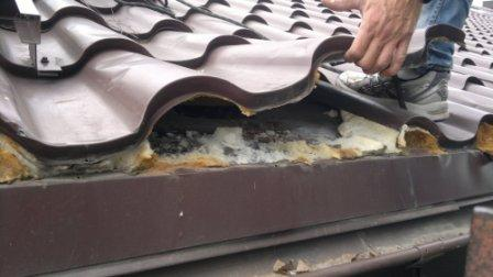 dakstiņprofila jumta remonts