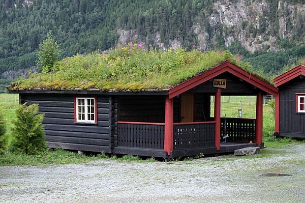 green-roof-norway-picture-9